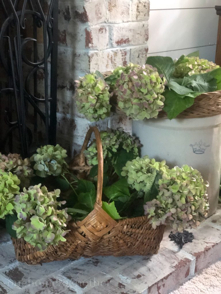 hydrangea stems drying in basket